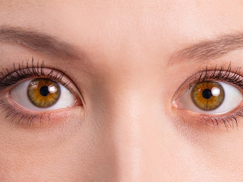 personnalite-yeux-brun-noisette-goseeyou